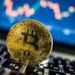 Crypto trades Profile Picture